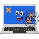 Ремонт компьютеров и ноутбуков удаленно через интернет, Курган