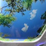 Потолок Франция Многоуровневый Глянцевый,Фотопечат, Курган