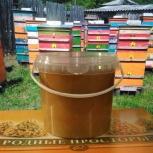 Мёд к чаепитию в Кургане Зауральская пчелиная вкусняшка с Пасеки 1кг, Курган