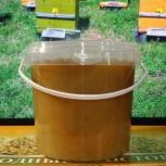 Мёд Пчёл в Кургане Зауральский донниковолуговой 1л, Курган